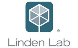 What's Next for Linden Lab?